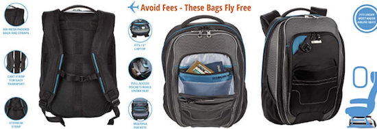 Lewis N Clark underseat carry on backpack basic economy