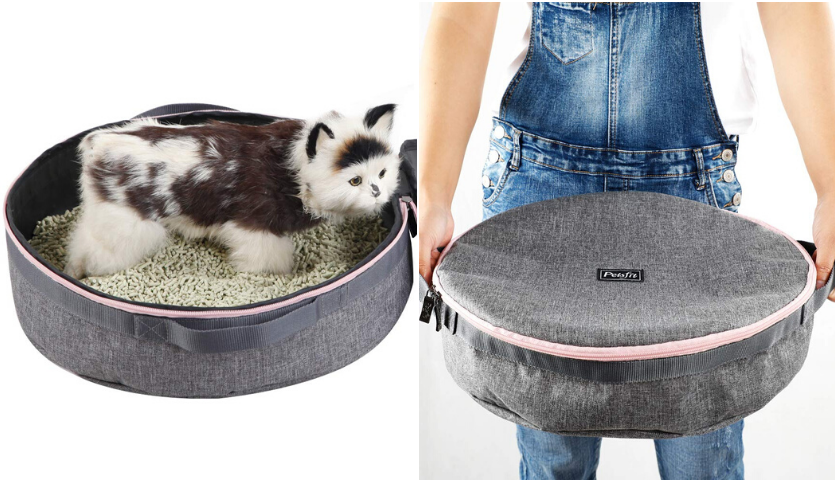 kitten sitting in portable litter box, person in overalls holding closed portable litter box