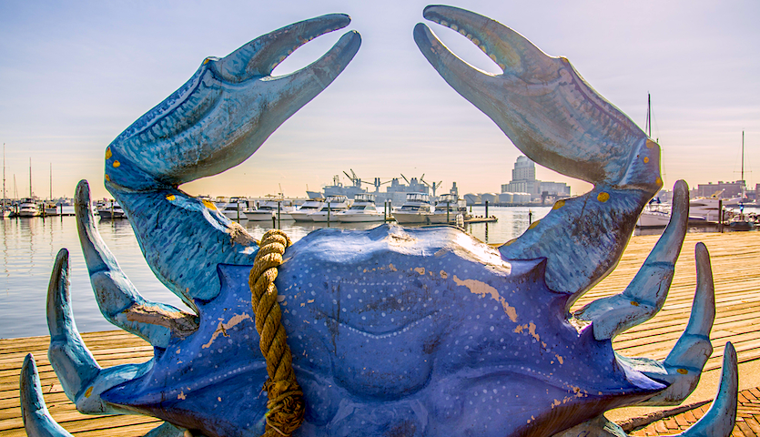 Baltimore Crab Statue by boats