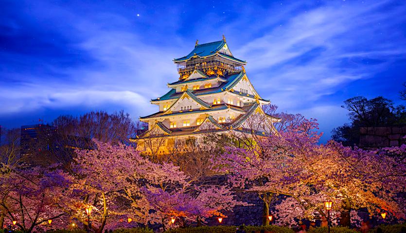 Himeji Castle in Osaka Japan with bloom